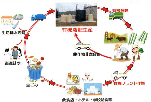 型 社会 循環
