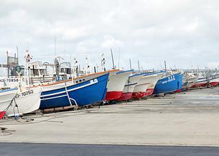 台風15号通過後も熱帯低気圧の影響でしけの状態が続いており、多くの漁船が陸揚げされたままとなっている=1日午前10時すぎ、新栄町