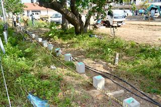 リゾート型分譲マンションのフェンス建設予定地。基礎部分の工事はもう終えており、並木分断の可能性がある=2日午後、宮良ヤラブ並木