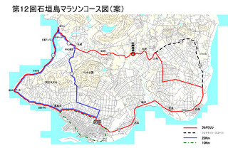 第12回大会を来年1月26日に開催することなどを決めた石垣島マラソン2014実行委員会の総会=9日夕、石垣市役所