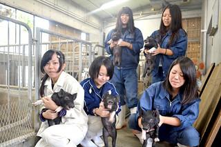 人工授精で誕生したアグー豚の子豚を抱く生徒ら=24日午前、八重農畜産科豚舎