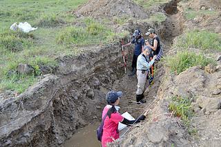 地層から津波の堆積物を調べている琉球大学と静岡大学、中央研究院のメンバーたち=8日午後、石垣市伊原間の田中牧場