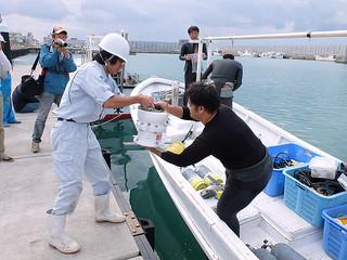 石垣島近海の海底に設置するため、波高計を作業船に積み込む受託業者ら=21日午前、八重山漁協前