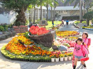 一人一鉢運動で育てた花壇の花が満開、校内は明るく華やいだ雰囲気に包まれている=17日午後4時ごろ、新川小