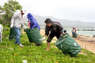 石垣島サンゴウィークの一環として行われたビーチクリーンで漂着ごみを拾う参加者ら=2日午前、伊野田海岸
