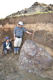 静岡大学理学部と同大学防災総合センターが行っている掘削調査で見つかった明和の大津波以前の津波によって運ばれたとみられる石(右下)。上部には明和の大津波時に起きたとみられる地割れの痕跡もある=19日午後、石垣市北部の牧場