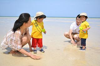 好天の下、潮干狩りを楽しむ親子連れの観光客=29日午前、川平底地ビーチ