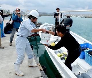 国の海洋再生エネルギー実証フィールド事業への応募に向け、石垣島近海の海底に設置する波高計を積み込む業者ら=2013年11月21日、八重山漁協前