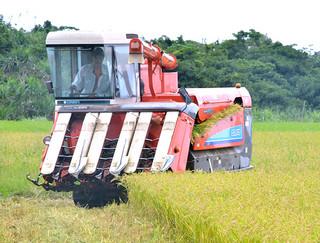 コンバインで1期米を収穫する西大舛高均さん=23日午前、西表南風見