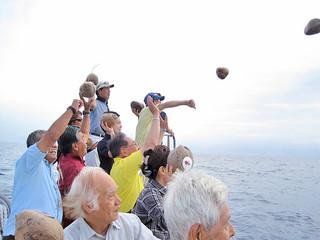 102個のヤシの実を海に流す参加者=1日午前、竹富町鳩間島沖 (石垣市観光交流協会提供)