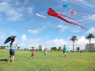 絶好の凧揚げ日和の下、多彩な凧が青空に舞った2014年石垣島凧あげ交流会=29日午前、ANAインターコンチネンタル石垣リゾート