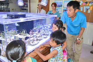 静岡県沼津市の沼津港深海水族館から里帰りしたサンゴについて説明する塩崎洋隆飼育長(右)と見入る子どもたち=1日午後、わくわくサンゴ石垣島センター