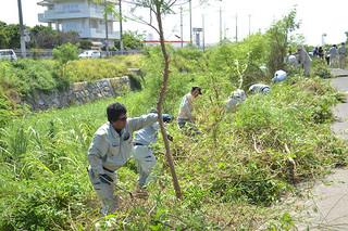7月の「河川・海岸愛護月間」にちなむモデル清掃で新川川を清掃する人たち=24日午後、同川