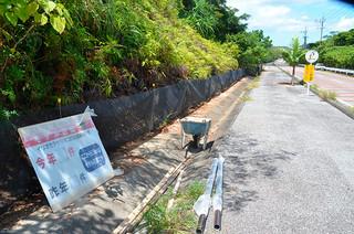 県道沿いに整備されたイリオモテヤマネコの侵入防止フェンス=27日午後、西表島高那地区