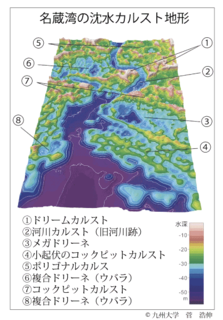 菅浩伸教授らのグループが公表した沈水カルストの3次元海底地形図