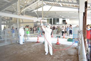 口蹄疫が発生したとの想定で防護服を着用して農場内の消毒訓練を実演する職員ら=29日午後、黒島家畜市場