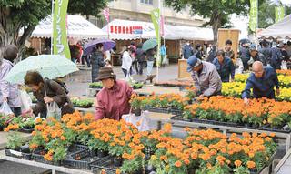 小雨がぱらつく中、大勢の市民でにぎわった八重山農林高校の農業祭=20日午前、同校