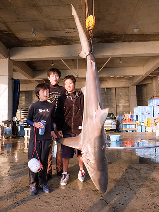 登野城地区魚類養殖場外側の海域で釣り上げられたメジロザメと、左から親川友希君、親川英和君、新里英也君=23日夕、八重山漁協登野城支所
