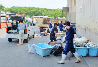 年末の大掃除の時期を迎え、搬入量が増えてくるごみ処理施設。市環境課では早めのごみ出しを呼びかけている=22日午後、石垣市一般廃棄物最終処分場