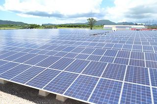 2012年7月の再生可能エネルギー固定価格買取制度が施行されて以降、急速に導入が進んだ太陽光発電施設=2013年6月18日、磯辺