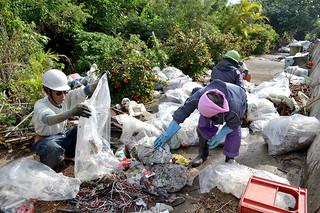護岸に不法投棄されたごみを回収するシルバー人材センターの会員ら=29日午前、八島町