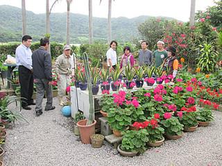 花と緑の街角コンテストの応募者の庭を審査する審査員ら=8日午前、伊野田の金城秀夫さん宅