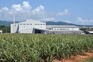 14日に落成した西表製糖工場の外観=14日午後