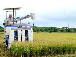 今月20日から収穫を開始した大浜博彦さん。ライスセンターの出荷開始で収穫が本格化する=25日午前、名蔵浦田原の水田