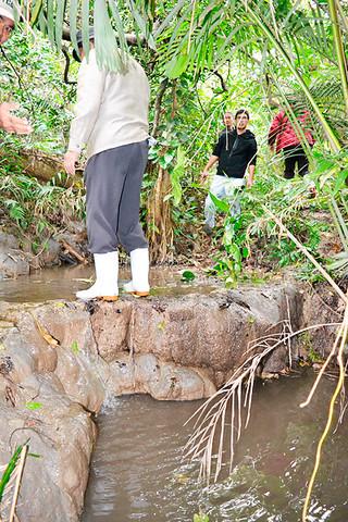 石垣市文化財審議会が指定することを決めたフミダカーラ流域のトゥファ(多孔質の炭酸塩堆積物)。写真は滝状のトゥファ=1月9日午後