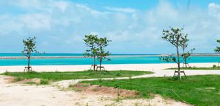 緑地や海浜ができつつある人工ビーチ。来年3月末の一部供用開始が予定されている=3日、南ぬ浜町