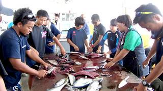 海上で漁師の仕事を体験した後、魚をさばく久部良中学校の生徒たち=11日、与那国町漁協セリ場
