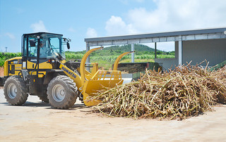 サトウキビの搬入が終了した西表製糖㈱=25日午後、西表