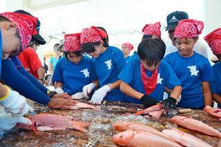 魚のさばき方などを学んだ八島小の6年生=17日午後、登野城漁港