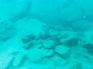 温泉が湧き出ている竹富島の北東部の海底(竹富町提供写真)