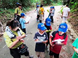 「アコークローの生き物調査」で、鳥やカエルの鳴き声を記録しながら野底林道を歩く子どもたち=17日夜、野底林道(エコツーリズム・環境教育「ふくみみ」提供)