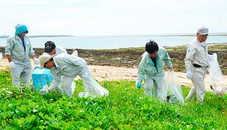 海岸線の漂着物などを回収する参加者ら=28日午前、大浜海岸