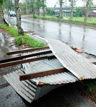 強風で吹き飛ばされた牛舎のトタン屋根。石垣市では67カ所の牛舎が被害を受けた=25日午前、石垣空港近くの国道390号沿い
