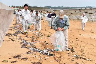 清掃活動には100人余りが参加。漂着ごみを回収する参加者ら=9月30日午後、同海岸