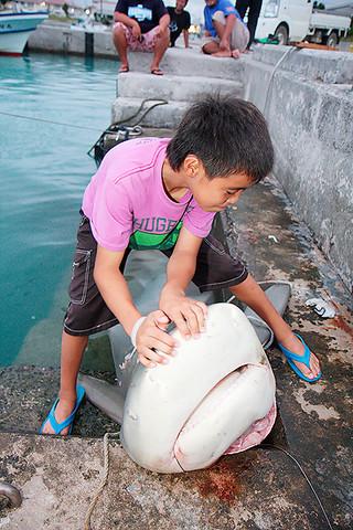 オオメジロザメとみられる体長約3メートルのサメを釣った大嶺皓也君=9日夕、登野城漁港
