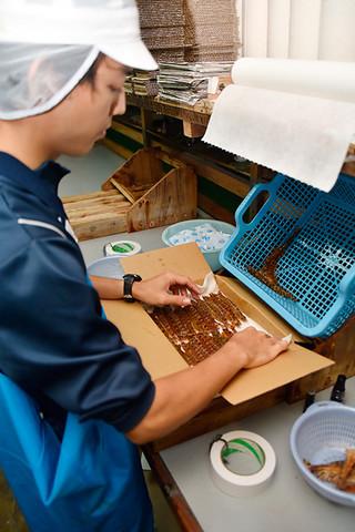 作業が本格化しているお歳暮用クルマエビの箱詰め=10日午前、エポック石垣島工場内