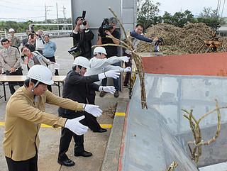 製糖開始式後、原料をケーンヤードに投げ入れ、操業の安全を祈願する人たち=19日午後、石垣島製糖