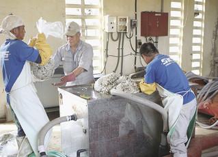 メタン発酵の原料となる給食の残りを破砕機に入れる作業員ら=3日午後、石垣市し尿処理場内