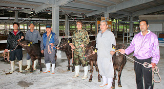第11回全国和牛能力共進会への出品を目指し、素牛の引き渡しをする繁殖農家と肥育農家ら=15日午後、八重山家畜セリ市場