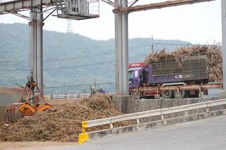 原料の搬入が計画の47%にとどまっている石垣島製糖。4月下旬まで操業を延長する予定だ=15日午後、同社