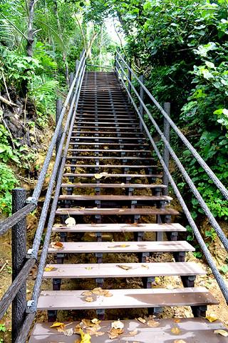 急勾配で40段の階段がある進入道路=9日午前、忘勿石之碑付近