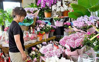 贈答用の花を選ぶ来店客=7日午後、フラワーショップミチ
