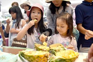 「観光の日」のイベントで石垣島産パインを試食する子どもたち=1日午後、南ぬ島石垣空港国内線到着ロビー