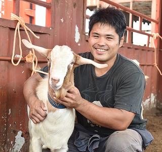 本島で開かれるヤギ競りに向けて生産したヤギをコンテナに積み込むゴーストファームエイトの新垣信成代表取締役=13日午後、石垣港