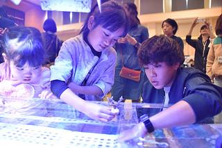 サンゴの苗づくり体験で移植用プレートに接着されたサンゴ苗を専用の水槽にスタッフと入れる子ども=12日午後、市健康福祉センター集団検診ホール