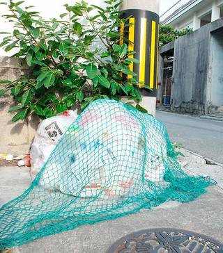 門前に出された「もやすごみ」。猫やカラスに荒らされないようネットをかぶせている=15日午前、石垣市内